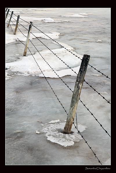 Fence in frozen slough