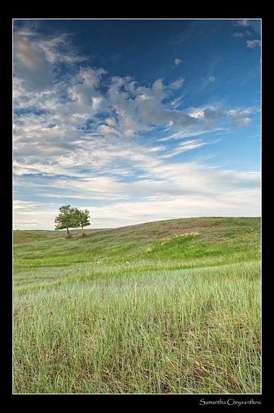 Waterton prairie